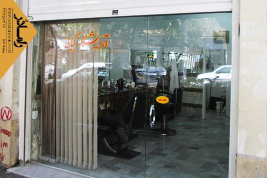 درب فروشگاه لولایی(10)